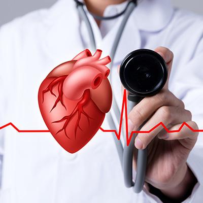 心血管和脑血管药物